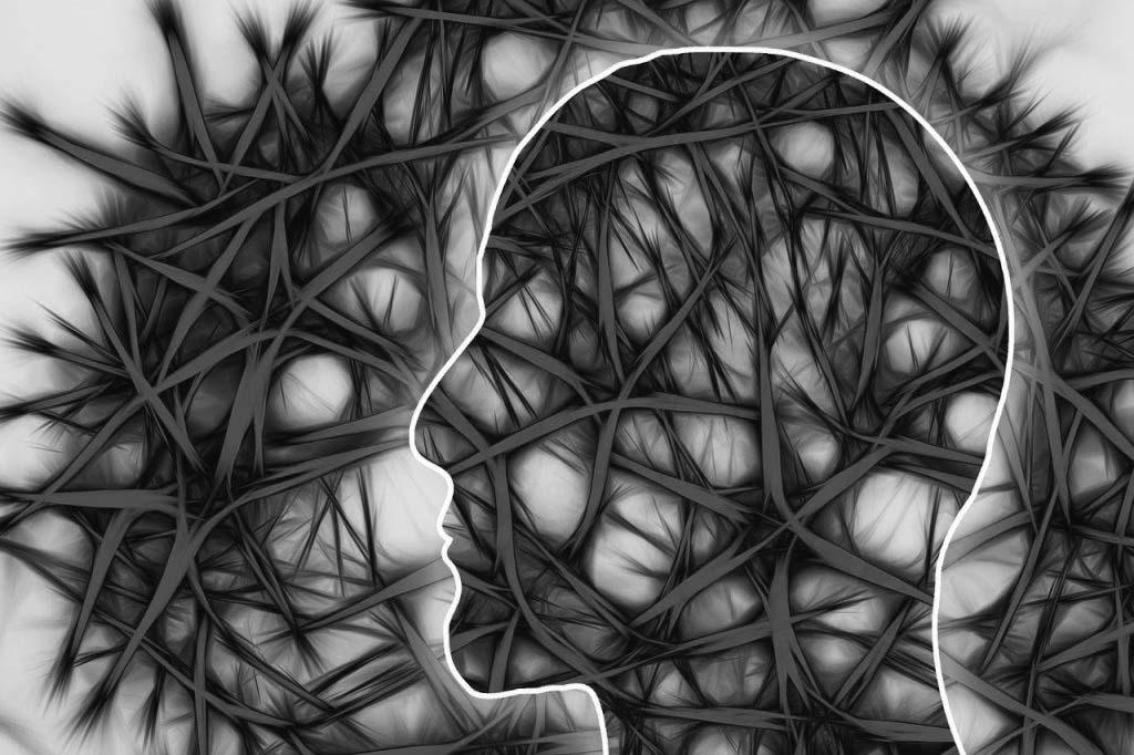 banco-celulas-neuronales